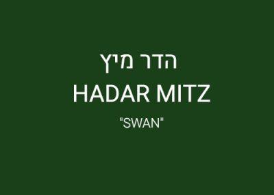 HADAR-MITZ